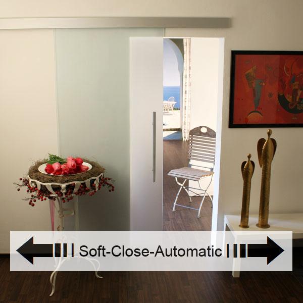 Schiebetür glas satiniert  Glasschiebetür - Set 1AS900-Soft Close - Glasschiebetüren ...