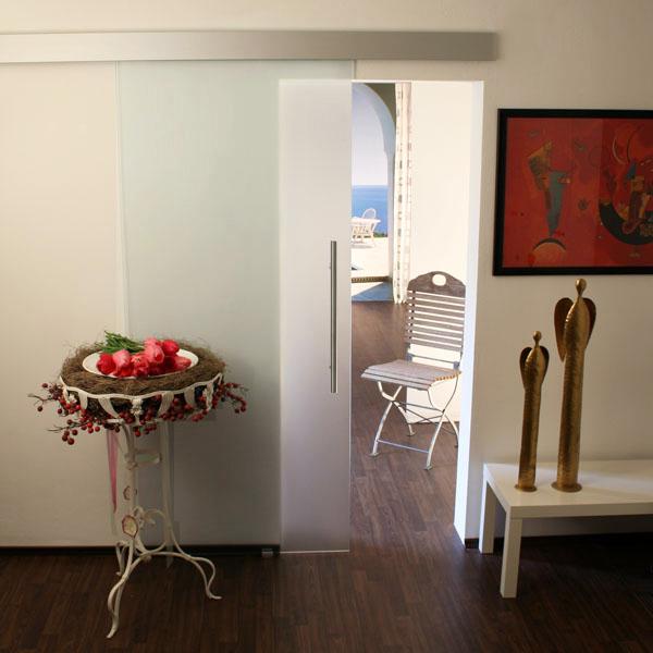 glasschiebet r set 1as satiniert sto griff glasschiebet ren schiebet r aus glas. Black Bedroom Furniture Sets. Home Design Ideas